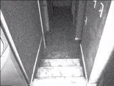 Image extraite d'une des vidéos