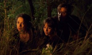 summer-camp-horror-movie-news-4-600x356